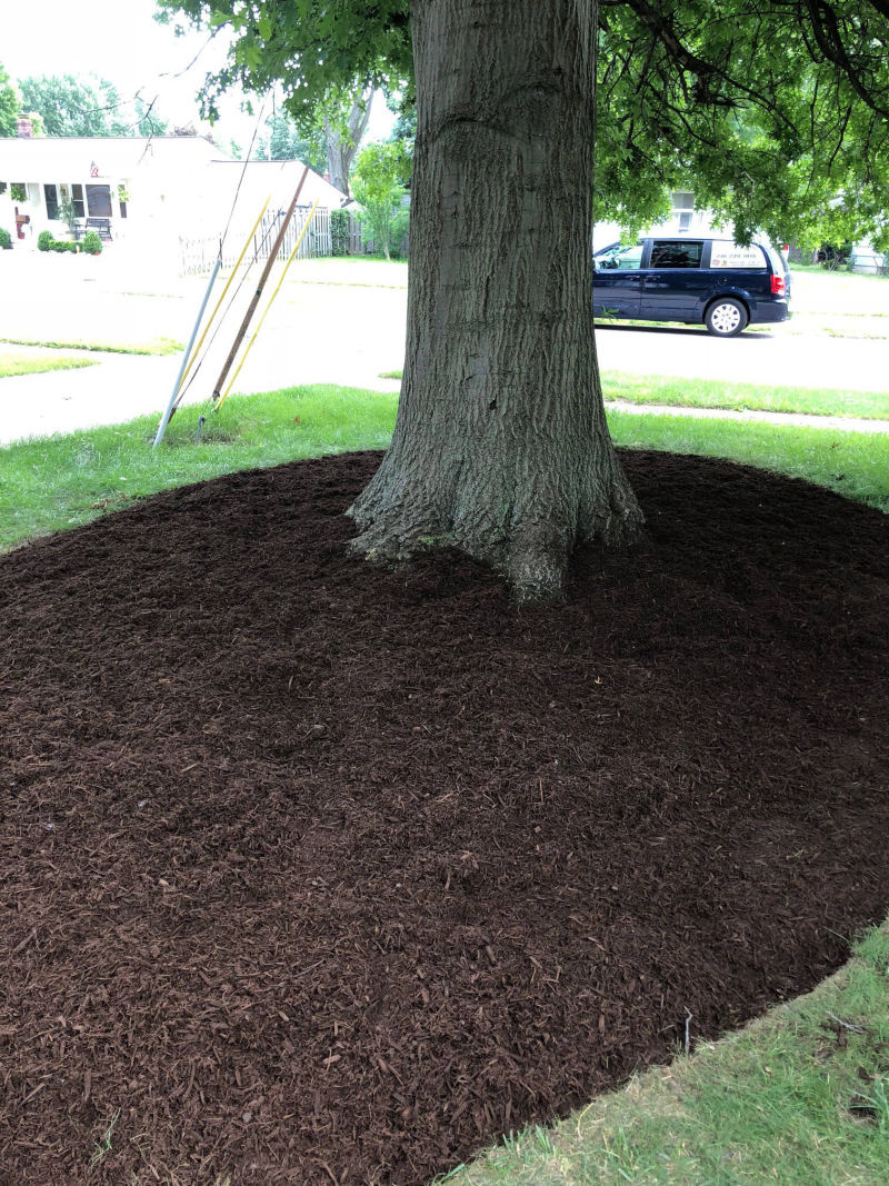 landscaping strongsville ohio